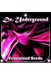 Semillas Dr Underground Feminizadas | Grow de Confianza ✔