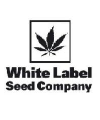 Sensi White Label Regulares