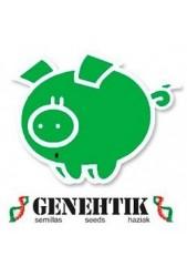 Genehtik Seeds ® | Banco de Semillas Cannabicas ◁ Envío Seguro