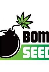 Semillas medicinales Bomb Seeds CBD ¡Por fin están aquí!