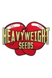 Heavyweight Seeds ® Semillas de Marihuana Feminizadas ✔