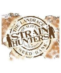 Semillas Strainhunters Autoflorecientes