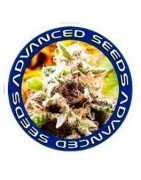 Semillas Advanced Seeds Medicinales