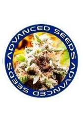 Semillas Advanced Seeds CBD medicinales ¡Comprar Online!