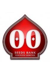 Semillas de marihuana 00 Seeds Bank CBD ¡Compralas desde el movil!
