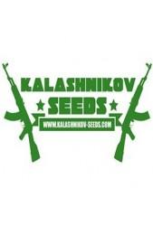 Kalashnikov Seeds ® El mejor Banco de Semillas Feminizadas ✔