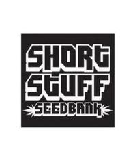 Semillas Short Stuff Seeds Regulares