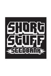 Semillas Short Stuff Seeds Regulares ¡Ya están disponibles!