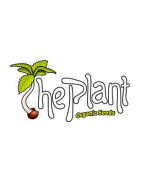 The Plant Organic Seeds