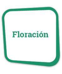 Fertilizantes de floración