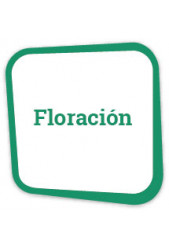 Comprar fertilizantes para floración a un precio irresistible