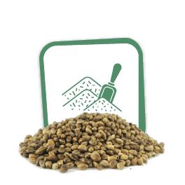 Comprar Semillas de marihuana a granel