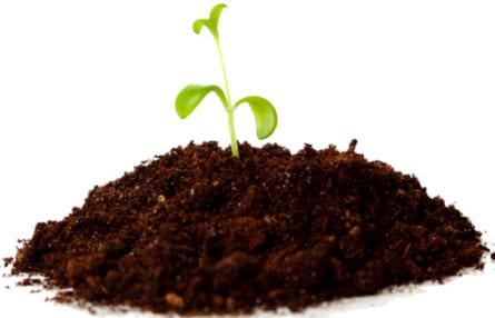 Comprar abonos de cultivo en tierra a los mejores precios