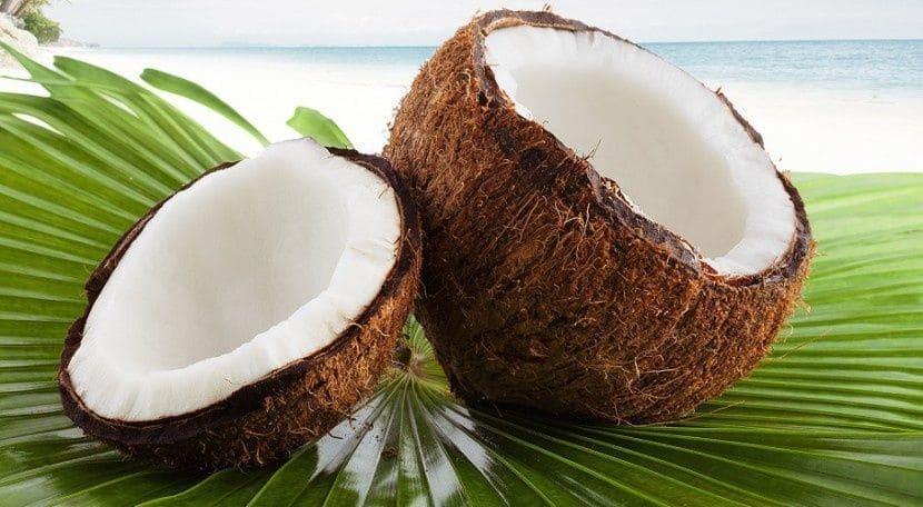 Aprende a germinar semillas de marihuana en coco