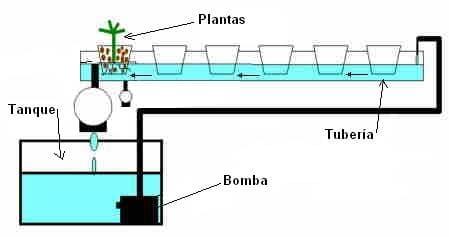 esquema de cultivo hidropónico