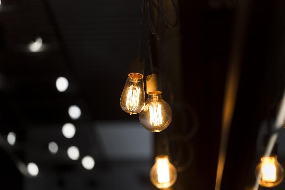 ¿Se pueden germinar semillas sin luz?