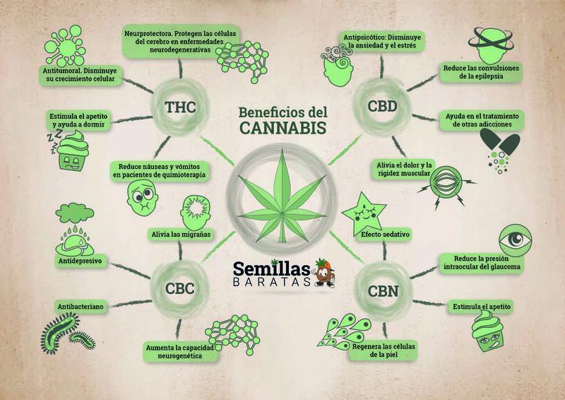 beneficios-del-cannabis