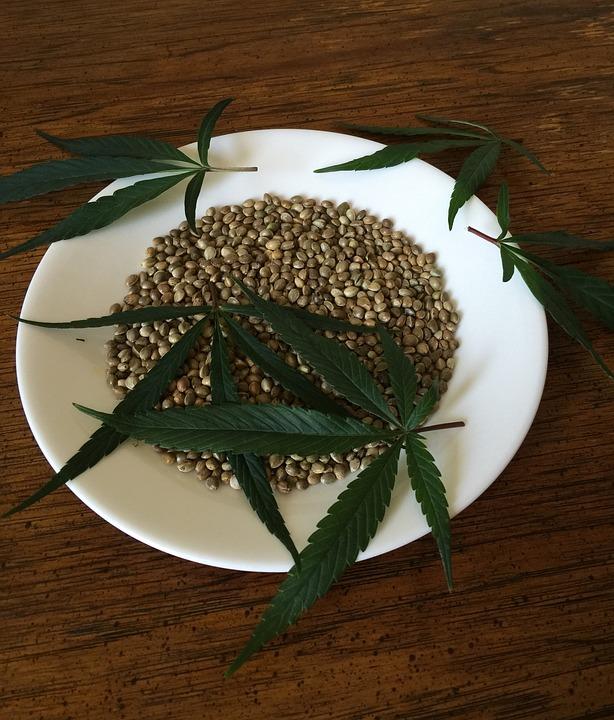 Plantar las semillas adecuadas