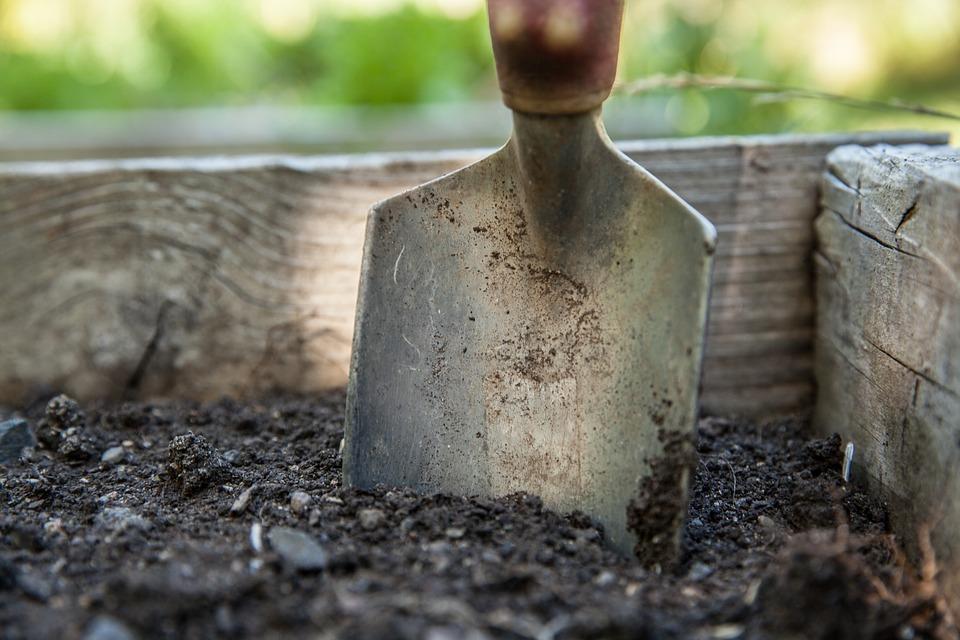 Preparar el terreno