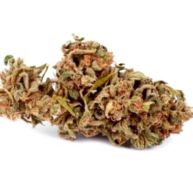 Blueberry OG, sutiles sabores cítricos y altamente terapéutica