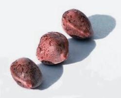 ¿De dónde son las semillas regulares R-Kiem Seeds?