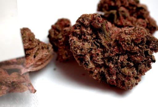 Comprar semillas cannabicas TNT Kush
