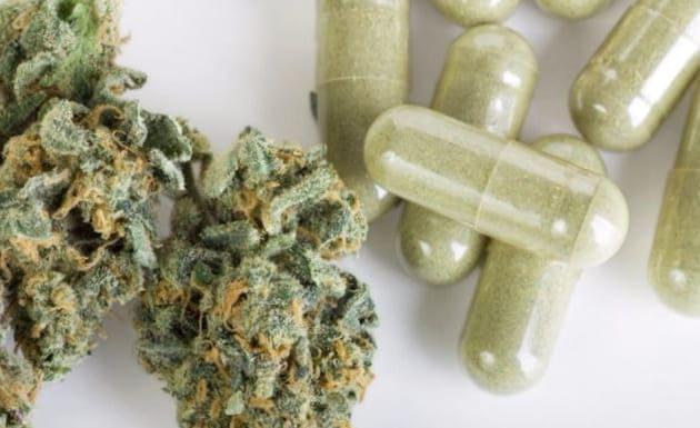Diferentes posturas frente al cannabis medicinal