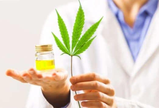 Los margenes terapéuticos del cannabis
